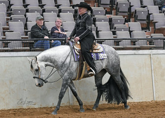 GJC Huntin For An Angel, ridden by Anne Edwards in the Select Amateur Western Pleasure