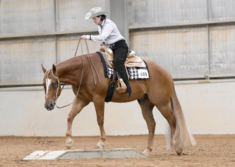Karin Morgan riding RQH Pass The Red in the Amateur Senior Horse Trail
