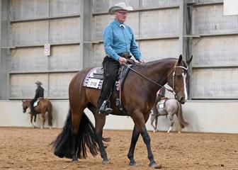 Harry Van Dyke riding Beyond Doubt, in the Select Amateur Horsemanship
