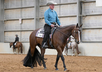 Harry Van Dyke riding Beyond Doubt, in the Select Amateur Horsemanship