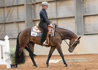 Keepin It Clascee ridden by Matthew Freiberg in the 3 Year Old Trail Class