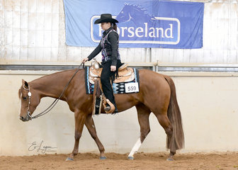 Minnie The Moocher ridden by  Kayla Senior in the Amateur Senior Horse Western Pleasure.