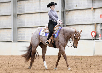 SQ Range Rover ridden by Danielle Kraft in the Amateur Horsemanship