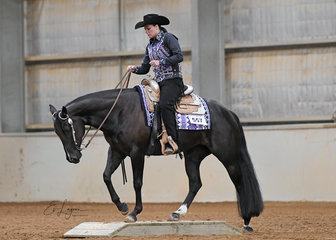 YLS Million Dollar Lazy ridden by Jade Spicer in the Amateur Senior Horse Trail
