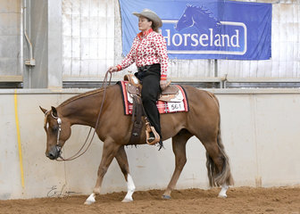 YLS Thats My Name, ridden by Yasmin Lee-Steere in the Novice Amateur Western Pleasure.