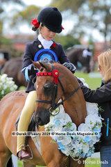 "Champion First Ridden Pony n/e 12.2hh. Rider under 12 years, ""Harrington Park Symphony"" ridden by Annabelle Richardson"