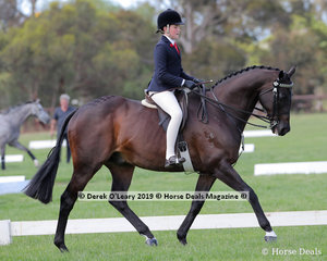 """Michelle Paynter's entry """"DP Amazing"""" ridden by Sophie Kootsra was Reserve Champion in the Child's Hack, over 15hh. Rider under 17 years"""