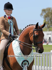 """Champion Child's Show Hunter Galloway over 14hh & n/e 15hh, """"Riegal Manolete"""" ridden and exhibited by Emily Murray"""
