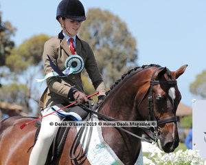 """Champion Child's Show Hunter Hack, over 15hh. Rider under 17 years, """"M. Amadeus"""" ridden by Alexandra Walsh and exhibited by Fiona Kittson-Walsh"""