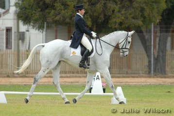 A busy Wendy Schaeffer rode her 'Koyuna Sun Dancer' into fifth place after the dressage phase of the Cape Jaffa Anchorage CIC*** with 57.50.