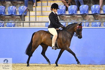 Jocelyn Mansley's, 'Tiana Shiloah' (Bradmore Toy Soldier imp UK/View Valley Diamonds) took the Runner Up award in the Ridden Part Welsh N.E. 12.2hh Mare, Gelding, Stallion Championship.