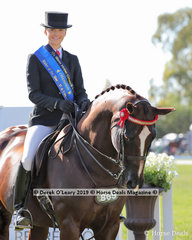 """Champion  Rider 17 years and under 21 years , Brynie Lee and """"SLM Valentino"""""""
