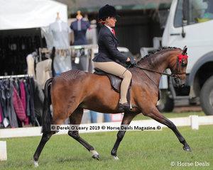 "Champion Debutante Saddle Pony, over 12.2hh & n/e 14hh, ""Emyella Heavens Soprano""  ridden by Chanele Hunter-Cooke exhibited by Phoebe Kouros"