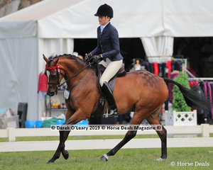 """""""Destiny's Image"""" exhibited and ridden by Samantha McMaster in the Debutante Saddle Galloway, over 14hh & n/e 15hh"""