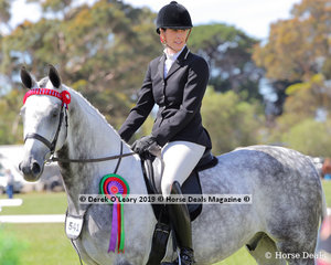 """Reserve Champion Debutante Saddle Hack, over 15hh, """"Wall Street Manhattan"""" ridden and exhibited by Sarah Beams"""