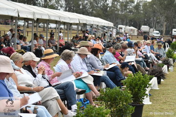 It was a very long day at the International Welsh Show today running from 8am until 10pm, but the large and attentive spectators sat with their catalogues open and their pens poised all day. There are estimated to be at least 50 visitors from the UK.