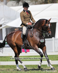 """Reserve Champion Small Show Hunter Hack, over 15hh & n/e 16hh, """"M. Amadeus"""" exhibited by Fiona Kittson-Walsh and ridden by Greg Mickan"""