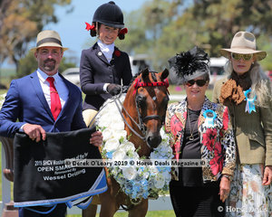 Annabelle Richardson and Harrington Park Symphony had a fantastic show, pictured here as Champion Small Pony, 12.2hh & under with Judges: Dianne Godfrey; Miss Kym Stewart; Mr Richard Rice