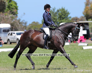 """Kate Ramsay, placed Top Ten in the Large Hack, over 16hh, riding """"Inafrenzy"""""""