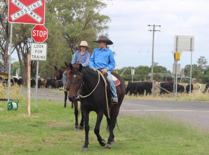 Drovers on the road.