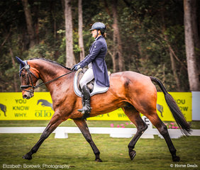 First horse and rider of the day in the arena in the OTTO SPORT AUSTRALIA CCI3*-L - Katrina Silk and Dunrostan.