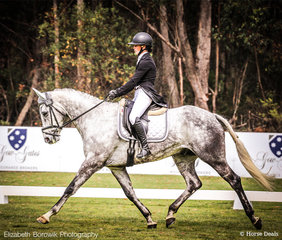Madison Simpson  and Tiraumea Sportsman powering along to 3rd Place (69.89%) in the dressage phase of the OTTO SPORT AUSTRALIA CCI3*-L.