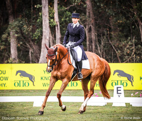 Jessica Grosmann and Sandhills Stanza looking focused in the OTTO SPORT AUSTRALIA CCI3*-L.