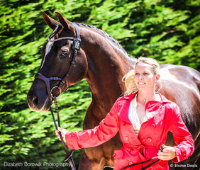 Christan Trainor and TS Windtanzer in the Dapple Eq - Trot Up on Thursday afternoon. They head into cross country tomorrow in 2nd Place (74.75%) in the Gubbins Pulbrook Group CCN1*-L class.