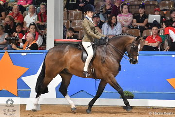 Riding for NSW, Isabella Tyson rode her well performed, 'Fremantle' by Fisherman's Friend to claim the Child's Small Show Hunter Hack Championship.