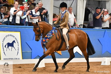 Riding for Victoria, Emily Murray is pictured aboard her own , 'Riegal Manolete' having claimed the Child's Small Show Hunter Galloway Championship on day one of the 2019 Ego Sun Sense Australasian Show Horse and Rider Championships.