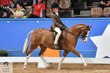 Riding for South Australia, Mia Ozlins is pictured aboard Sarah Barker's, 'Rivington Lollipop' during the Child's Small Show Hunter Pony Championship.