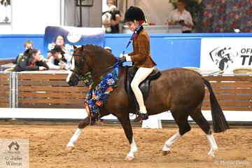 Representing NSW Claudia Hughes rode Kim Glover's, 'Armani Park Robin Hood' to claim the Child's Small Show Hunter Pony Championship on day one of the 2019 Ego Sun Sense Australasian Show Horse and Rider Championships.