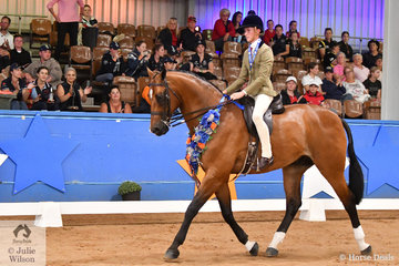 Riding for NSW, Tyler Kelly rode Matilda Longbottom's well performed, 'Powerplay' to take out the Child's Large Show Hunter Hack Championship on day one of the 2019 Ego Sun Sense Australasian Show Horse and Rider Championships.