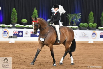 Georgia Dalley from NSW rode, 'Ribbleton France' to take out the Rider 15-17 Runner Up award at the 2019 Ego Sunsense Australasian Show Horse and Rider Championships.