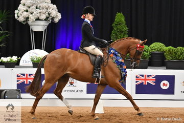 Well used to success at the Nationals, Trinette Crawford rode Belinda Sibley's, 'Penbury Park Time Square' to claim the Small Galloway Championship at the 2019 Ego Sunsense Australasian Show Horse and Rider Championships.