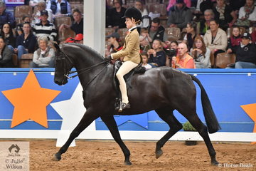 Elizabeth Taylor has had a super show with Hunter Taylor's, 'EBL One Night In Paris' by Regardez Moi and claimed the Large Show Hunter Galloway Championship on the final day of the 2019 Ego Sunsense Australasian Show Horse and Rider Championships.