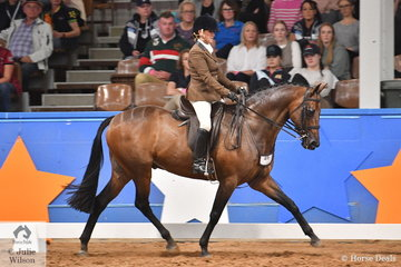 Michelle Bowden from WA rode her, 'Broadwater Park Toy Soldier' to claim the Large Show Hunter Galloway Runner Up award.