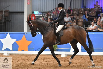 Former winner, Rebecca Farrow, riding for Victoria took the Runner Up award in the Rider Over 25 Years Championship on the final day of the 2019 Ego Sunsense Australasian Show Horse and Rider Championships.