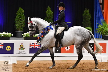 What a year for Kaitlin Labahn-Meyland and 'Rolex II'. Earlier in the year they took out the Sydney Royal Hack Championship and on the final night of the  2019 Ego Sunsense Australasian Show Horse and Rider Championships they claimed the National Large Hack Championship.
