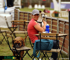Watching the World Cup was Courtney Van Der Werf and her two four-legged companions Tyson the boxer and Sasha the whippet.