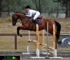 Starting off her round with a lovely shape over the first fence in the 90cm - 1m class was Courtney Van Der Werf and her 6 year old Thoroughbred gelding Mediterranean Showman.