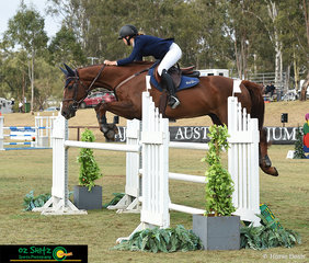 First out in the Super Junior Final on the last day of the 2019 Sydney Summer Show Jumping Classic was Alex Wald riding Royal Cruiser.