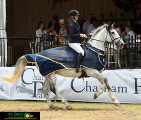 After winning the Amateur Rider Series at the Sydney Summer Classic, Jennifer Smith and Country Platinum took their victory lap.