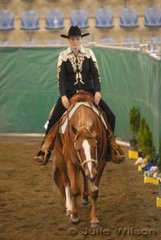 YLS Tranquility owned and ridden by Yasmine Lee-Steere was a finalist in the $750 Amateur Ltd Western Pleasure Stakes sponsored by Hobby Horse Clothing and Horsemans Trading Post,