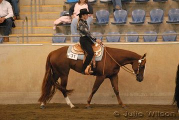 Winderadeen Dream On owned by R Sim and D Greening and ridden by D Greening was a finalist in the $750 Ltd 2 yo Western Pleasure Futurity sponsored by Croppy's P's and Q's.