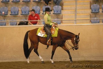 Hot Riddin Harry owned by C Rowland and B Chapman and ridden by B Chapman made the final  in the $750 Ltd 2 yo Western Pleasure Futurity sponsored by Croppy's P's and Q's.
