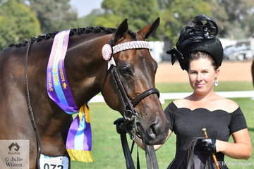 Hollie Hilderbrandt is having great success with her, 'Tide Up'. The hack shown successfully by Kathleen Mullan as Divinity was declared Reserve Champion in the Led OTT Thoroughbred State Final.