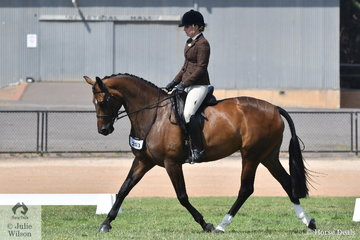 Brook Wheeler took out the First Season Show Hunter Hack Reserve Championship with her, 'Bloomfield Valtini'.