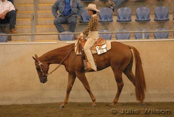 Winderadeen Sizzlin owned and ridden by Holly Marshall to be a finalist in the $750 Ltd 2 yo Western Pleasure Futurity sponsored by Croppy's P's and Q's.
