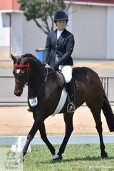 Sarina Quick is pictured abaord her First Season 15-15.2hh Hack, 'Cleopatra's Special Agent'.